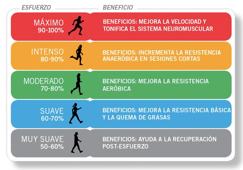 distancia Violeta norte  Empezar a correr: ¿Correr por pulsaciones? | SIEMPRE CORRIENDO